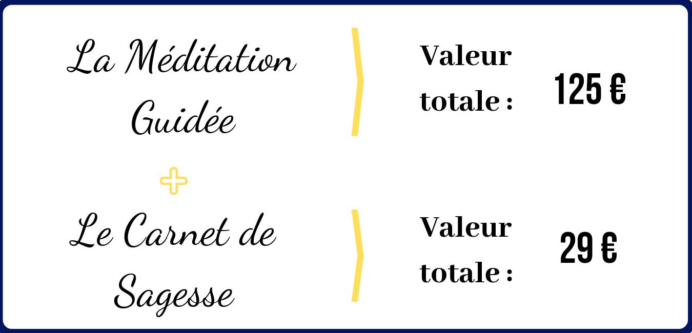 La Méditation Guidée + Le Carnet de Sagesse = 125 + 29 euros