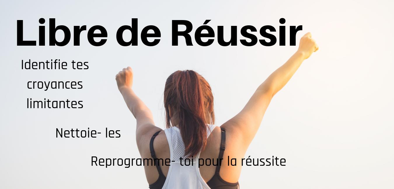 Libre de Réussir - Identifie tes croyances limitantes - Nettoie- les - Reprogramme- toi pour la Réussite