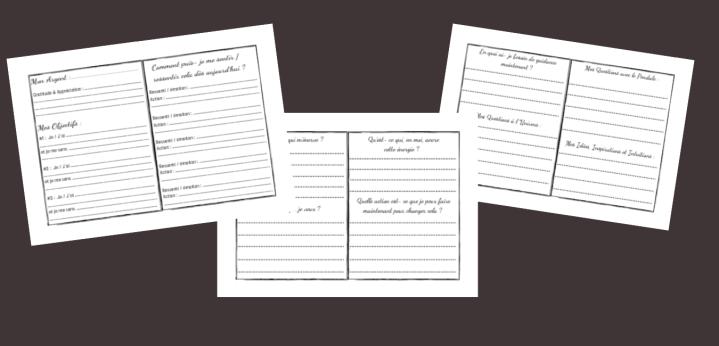 Exemples de pages du Journal de la réussite
