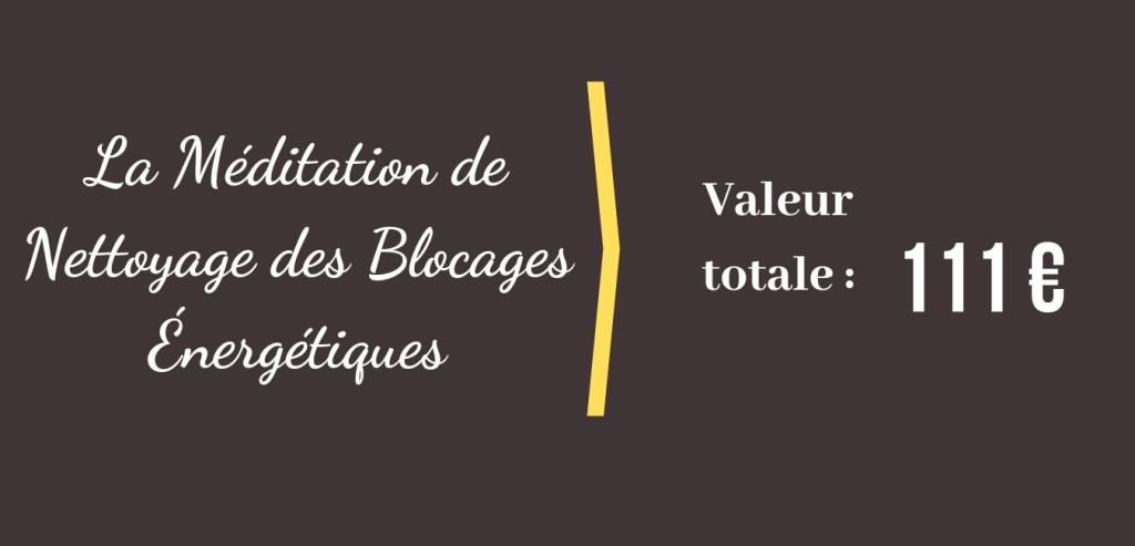 La Méditation de Nettoyage des Blocages Énergétiques Valeur totale 111 euros