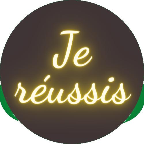 Offre- toi la Réussite que tu mérites apour seulement 11, 11 euros !
